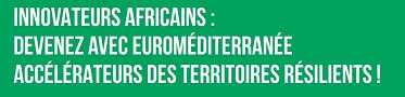 Innovateurs Africains